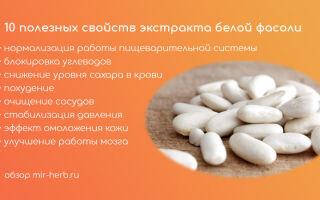 10 полезных свойств экстракта белой фасоли, оказывающих положительное влияние на здоровье человека. Влияние экстракта на процесс похудения