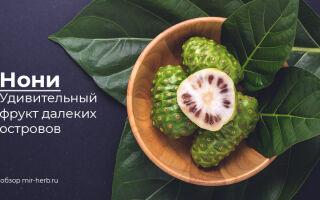 Полезные свойства фрукта нони для организма человека. Обзор разных форм выпуска: нони в капсулах, порошке и в виде сока. Примеры добавок на iHerb