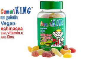Эхинацея с витамином С и цинком – комплексная добавка от компании Gummi King для поддержания детского иммунитета