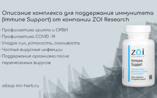 Описание комплекса для поддержания иммунитета (Immune Support) от компании ZOI Research: состав, инструкция по применению, отзывы