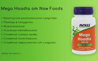 Помогает ли похудеть добавка Mega Hoodia (мега худия) от компании Now Foods? Инструкция по применению, состав и обобщенные отзывы потребителей. Где купить дешевле?