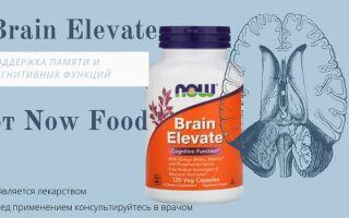 Brain Elevate от Now Foods – обзор комплекса