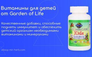Обзор самых популярных витаминных добавок для детей от компании Garden of Life