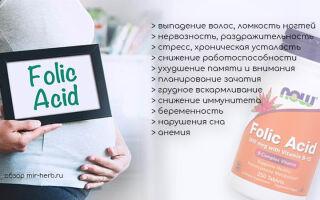 Обзор добавок на основе фолиевой кислоты от компании Now Foods в дозировках 800, 1000 и 5000 мкг. Инструкция по применению, где купить дешевле, отзывы потребителей