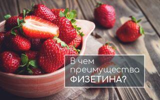 Что такое физетин? Влияние на организм и полезные свойства. В каких продуктах содержится больше всего. Подбор самых популярных добавок с физетином