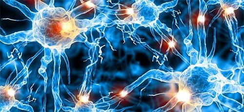 нейросвязи