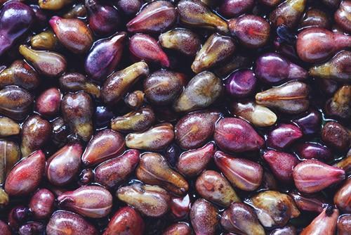виноградная косточка