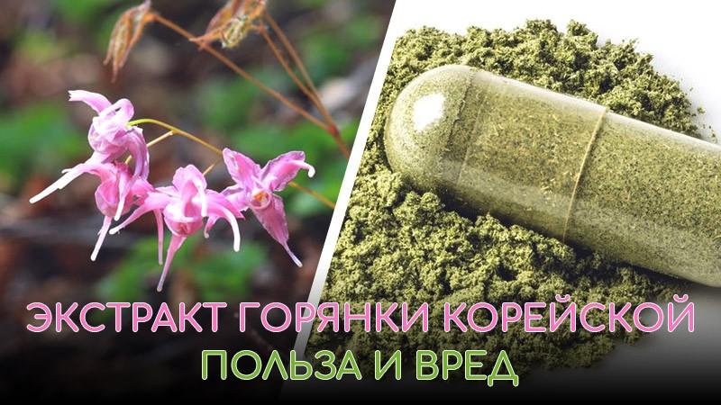 Какую пользу здоровью человека может принести экстракт горянки корейской (эпимедии)?