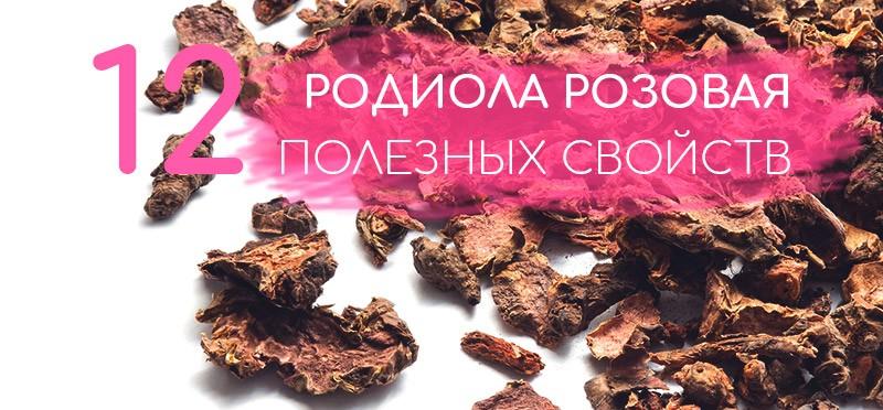 Польза родиолы розовой для организма человека: известный адаптоген на страже вашего здоровья и долголетия. Инструкция по применению в капсулах и каплях