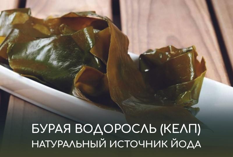 Бурая водоросль (келп) - натуральный источник йода для организма человека. Описание растения, его полезные свойства, подборка бадов с iHerb