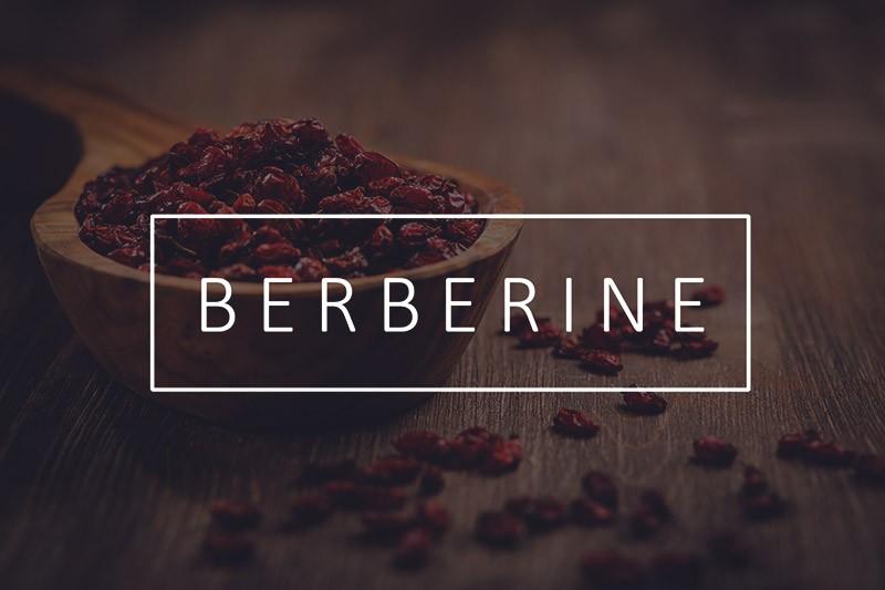 Польза берберина для организма человека. В каких растениях содержится? Показания к приему, дозировка