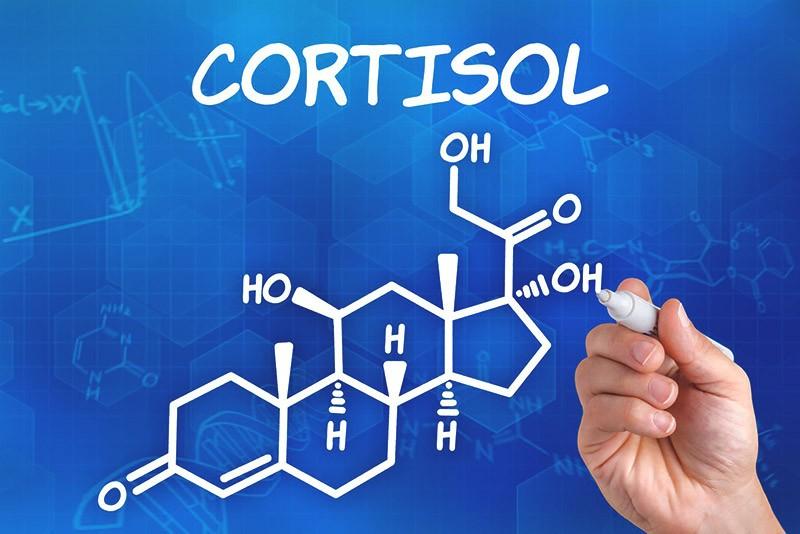 химическая формула cortisol