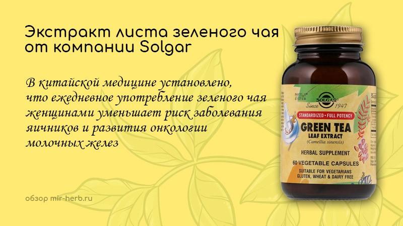 Экстракт листа зеленого чая от компании Solgar: самый подробный обзор добавки. Инструкция, разбор состава, где купить дешевле всего