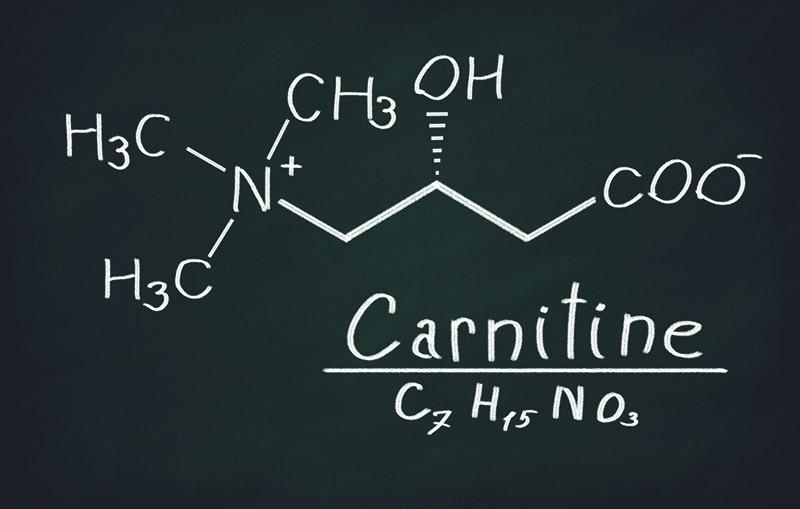 химическая формула л карнитина