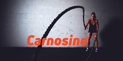 l-carnosine отзывы