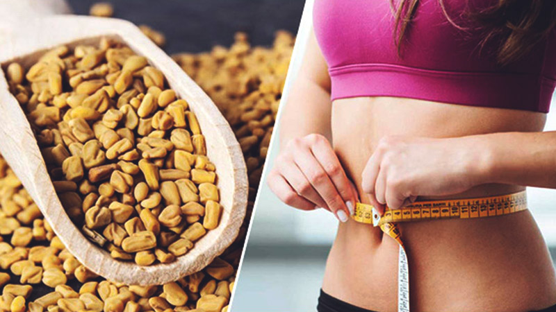 влияние пажитника на похудение