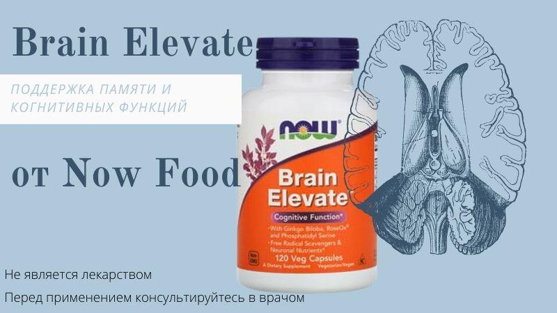 brain elevate now foods