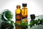 Польза масла орегано для организма человека. Покупка качественного продукта на iHerb