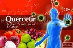 Положительное воздействие кверцетина на организм человека. В каких продуктах содержится больше всего, возможность покупки добавки на iHerb