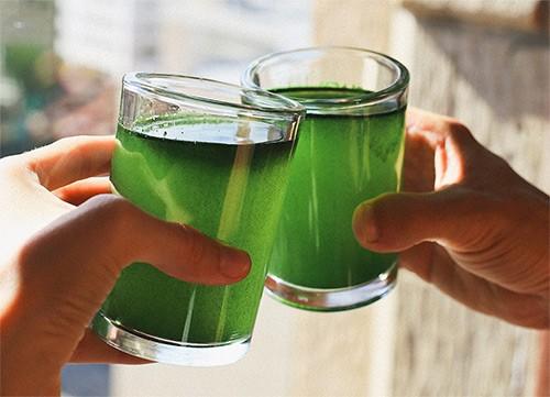 хлорелла для питья