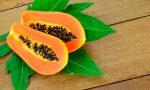 Польза и применение ферментов (энзимов) папайи. Ассортимент самых популярных добавок на iHerb